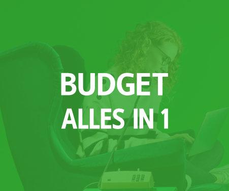 allesin1-budget
